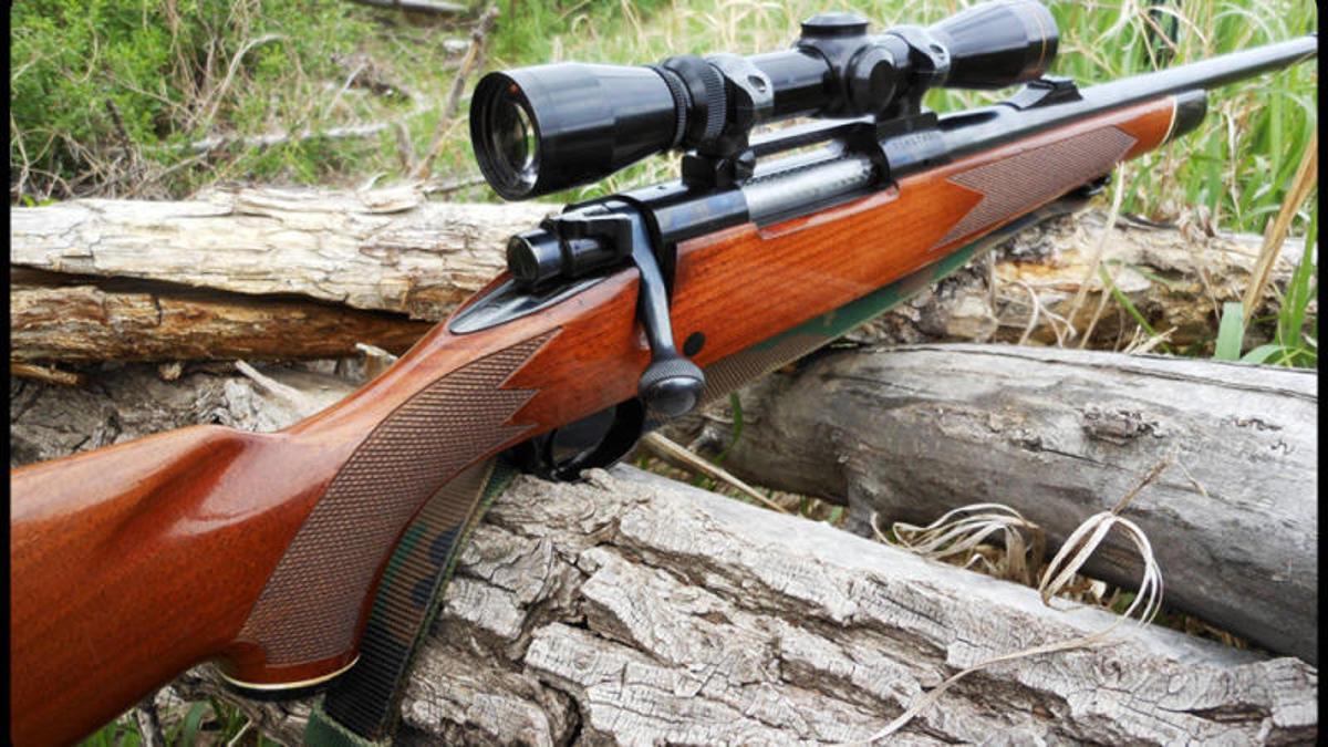 В Закарпатті лісова охорона затримала браконьєрів з мисливським карабіном та м'ясом оленя