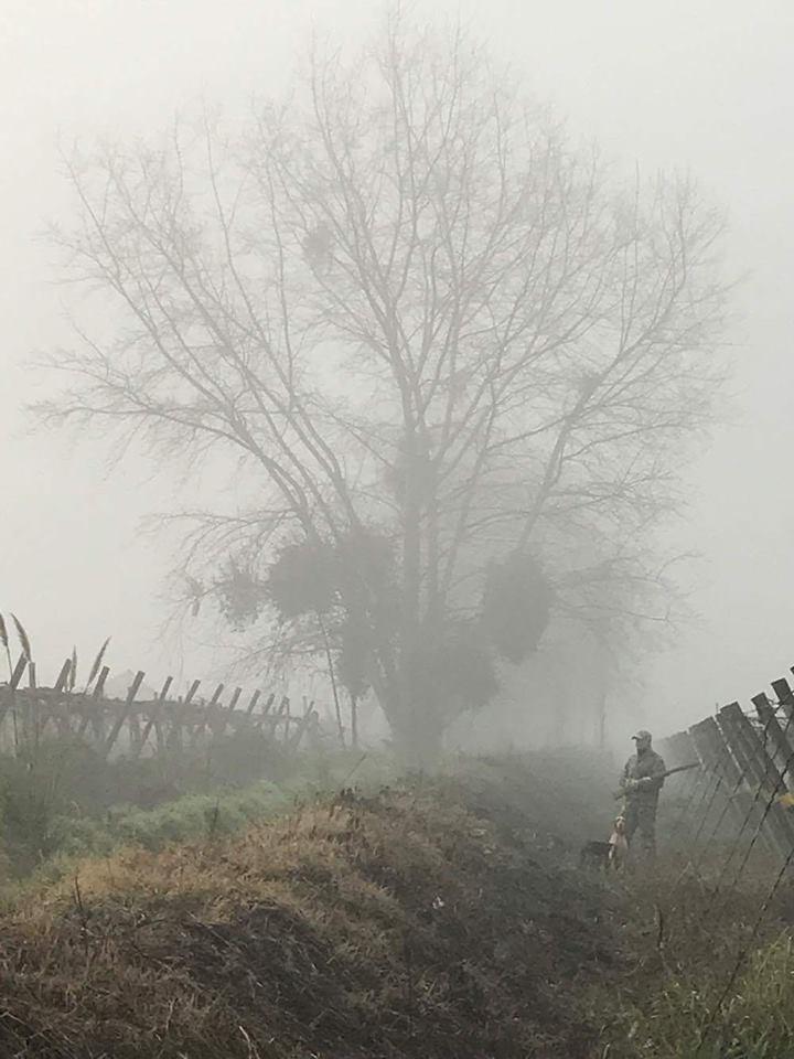 Полтавські мисливці полюватимуть із 18 години 5 серпня