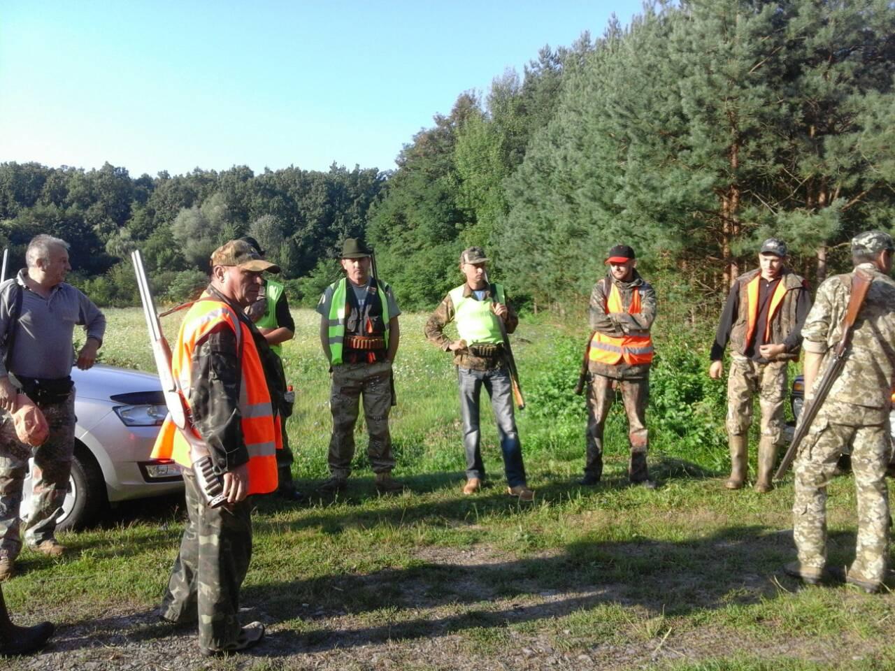 40 мукачівських мисливців в перший день відстрілу кабанів пройдуть понад 1000 гектарів (ФОТО, ВІДЕО)