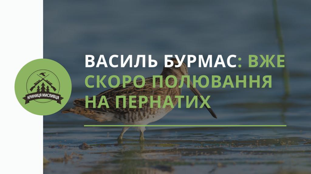 Василь Бурмас_ Вже скоро полювання на пернатих