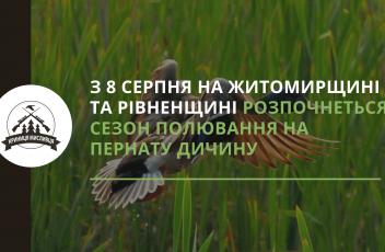 полювання (4)