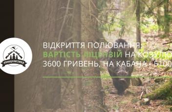 полювання (13)