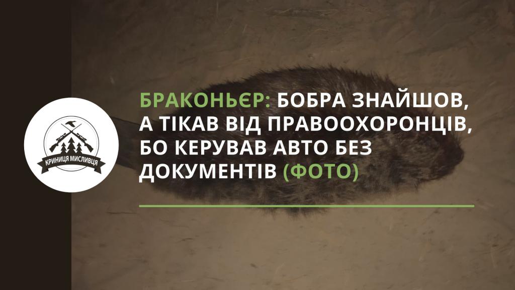 полювання (18)