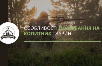 полювання (3)
