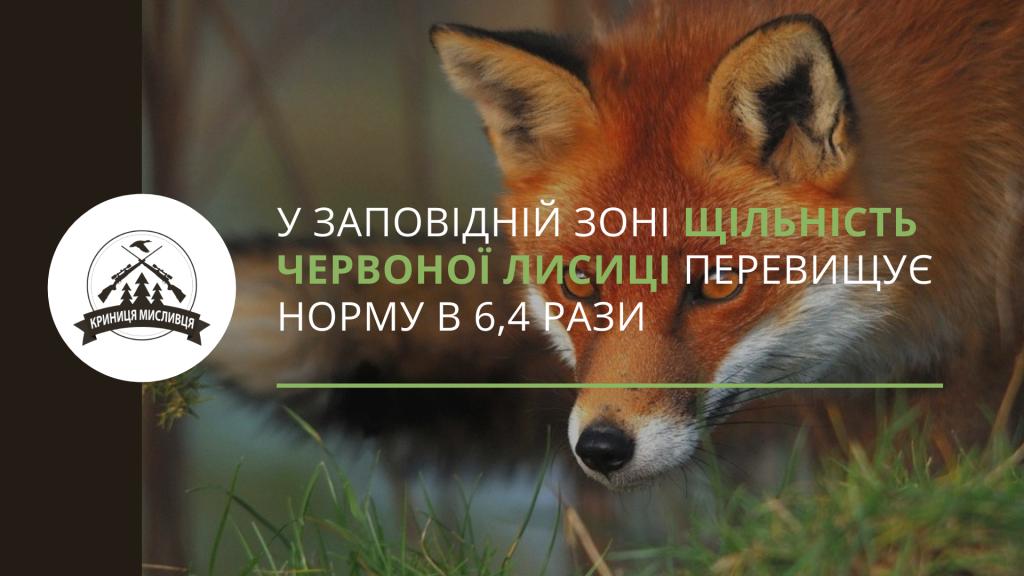полювання (5)