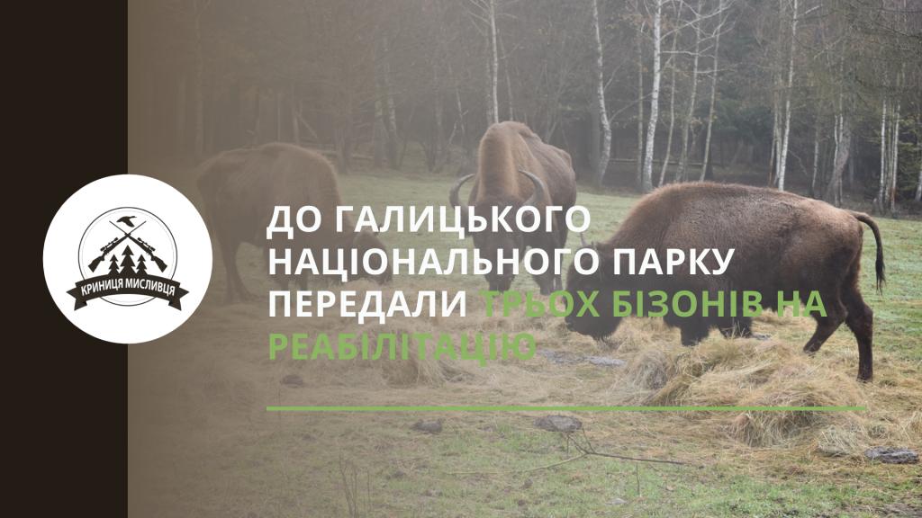полювання (40)